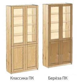 Шкаф с дверьми книжный